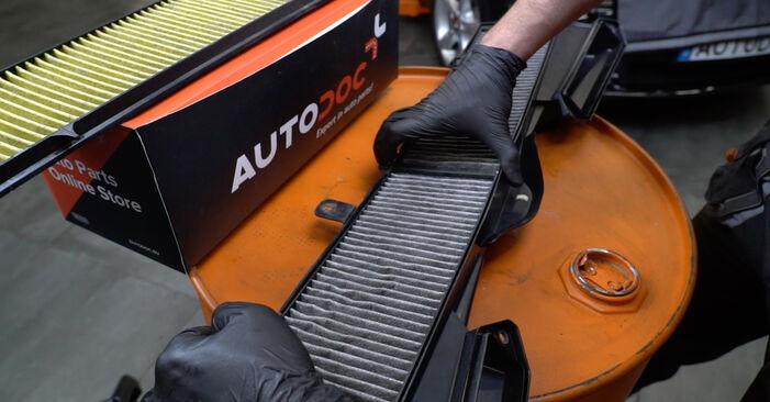 Hoe BMW 1 SERIES 125i 3.0 2010 Interieurfilter verwijderen – online eenvoudige instructies