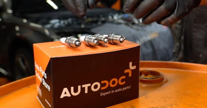 αλλαγη Μπουζί AUDI A4 3.0 TDI quattro: online οδηγοί και βίντεο tutorial