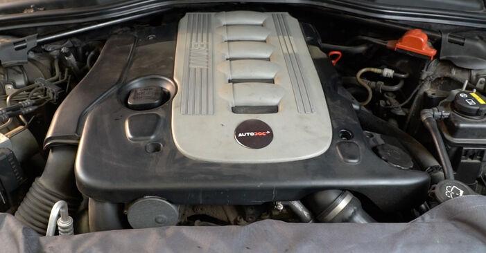Wie man Ölfilter beim BMW E60 2001 wechselt - Gratis PDF- und Video-Tutorials