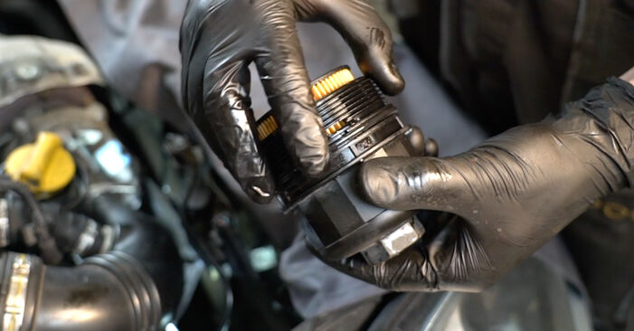 Changing Oil Filter on FIAT GRANDE PUNTO (199) 1.4 16V 2011 by yourself
