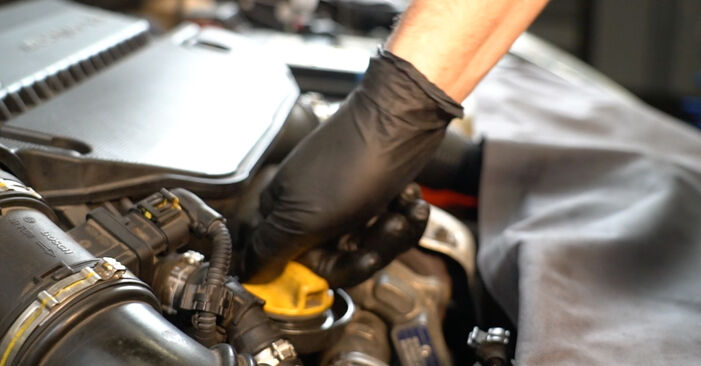 DIY replacement of Oil Filter on FIAT GRANDE PUNTO (199) 1.2 2008 is not an issue anymore with our step-by-step tutorial