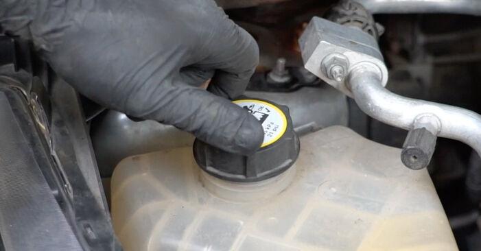 Fiesta Mk6 Hatchback (JA8, JR8) 1.4 LPG 2019 Vandpumpe + Tandremssæt gør-det-selv udskiftnings værksted manual