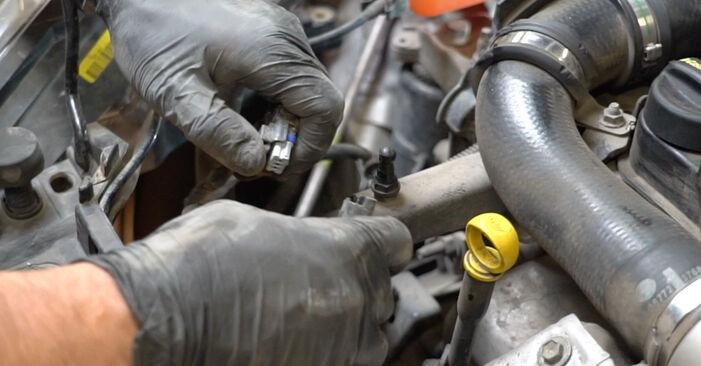Hvordan man fjerner FORD FIESTA 1.4 LPG 2012 Vandpumpe + Tandremssæt - nem at følge online instruktioner