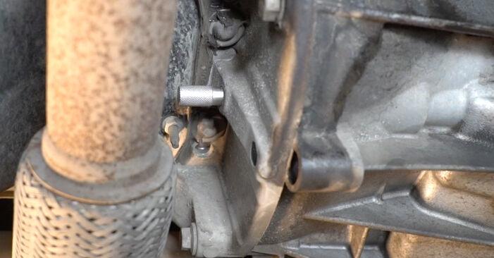 Ford Fiesta ja8 1.4 TDCi 2010 Vandpumpe + Tandremssæt udskiftning: gratis værksteds manualer