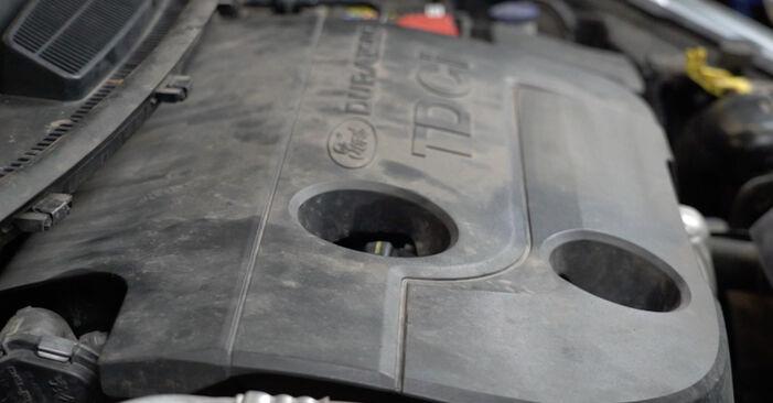 Fiesta Mk6 Schrägheck (JA8, JR8) 1.4 LPG 2019 1.4 TDCi Ölfilter - Handbuch zum Wechsel und der Reparatur eigenständig