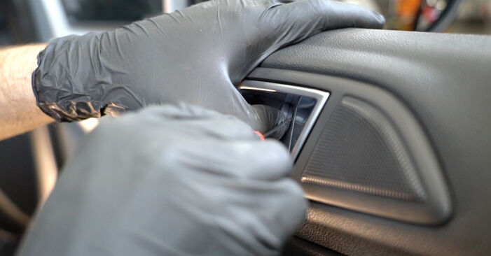 Come rimuovere FORD FIESTA 1.4 LPG 2012 Specchietti Retrovisori - istruzioni online facili da seguire