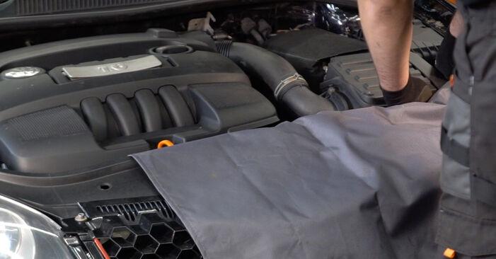 Kako zamenjati VW Golf V Hatchback (1K1) 1.9 TDI 2004 Oljni filter - priročniki s koraki in video vodniki