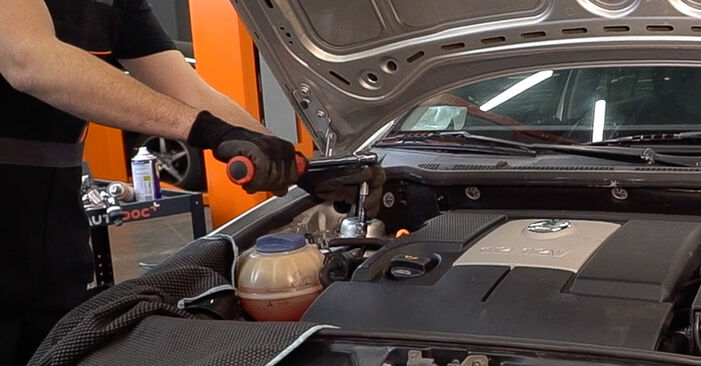 Changing Shock Absorber on SKODA Fabia I Combi (6Y5) 1.4 2002 by yourself