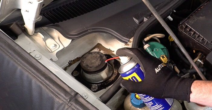 Fiat Doblo Cargo 1.3 D Multijet 2002 Shock Absorber replacement: free workshop manuals