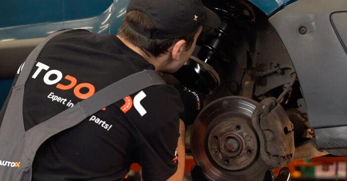 Schritt-für-Schritt-Anleitung zum selbstständigen Wechsel von Renault Kangoo kc01 2010 1.2 16V Federn
