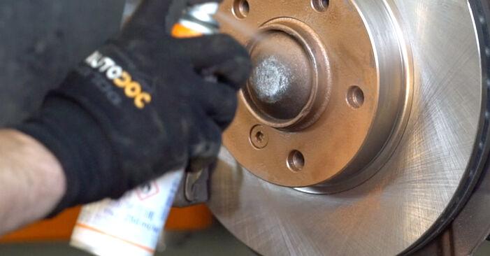 Ar sudėtinga pasidaryti pačiam: BMW 3 Convertible (E46) 320Cd 2.0 2004 Spyruoklės keitimas - atsisiųskite iliustruotą instrukciją