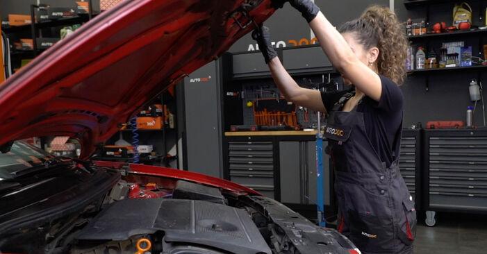 Wie Luftfilter Seat Ibiza 6l1 1.9 TDI 2002 tauschen - Kostenlose PDF- und Videoanleitungen