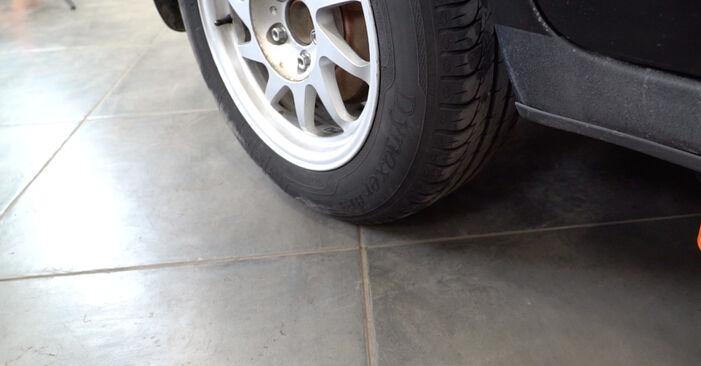 Schritt-für-Schritt-Tutorial zum eigenständigen Austausch von Ford Focus mk2 Limousine 2008 1.6 Ti Federn