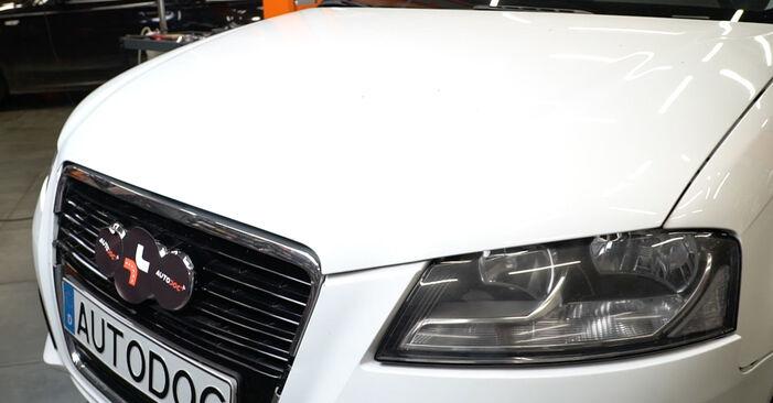 AUDI A3 Sportback (8PA) 2.0 TDI 2007 Bougies zelf remplaceren– online tutorial