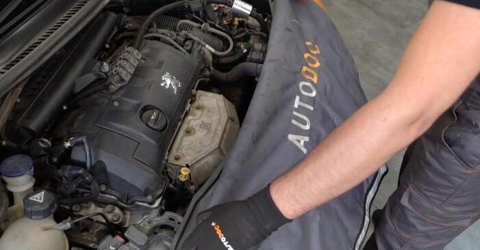 Wie Ölfilter PEUGEOT 207 (WA_, WC_) 1.6 HDi 2007 austauschen - Schrittweise Handbücher und Videoanleitungen