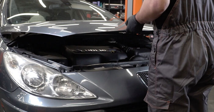 Wie Motorlager Peugeot 307 SW 1.6 HDI 110 2000 tauschen - Kostenlose PDF- und Videoanleitungen