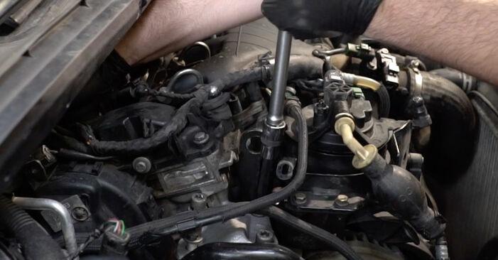 Hvordan man udskifter Motorophæng på Peugeot 307 SW 2000 - gratis PDF og video manualer