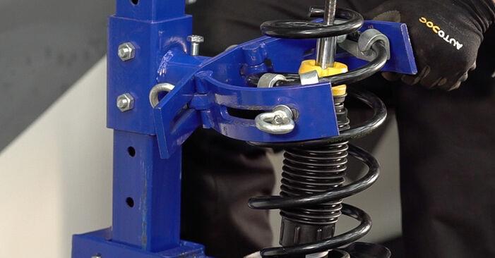 FIAT BRAVO II (198) 1.6 D Multijet 2008 Tlumic perovani výměna: bezplatné návody z naší dílny