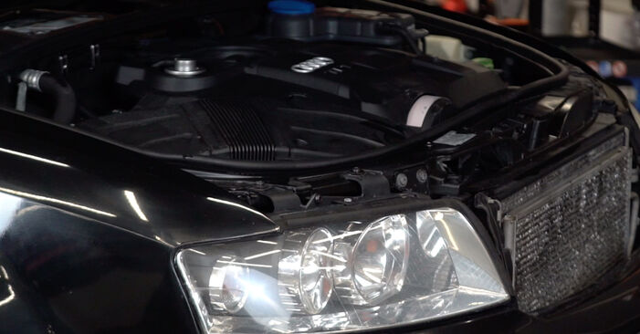 Wie Stoßdämpfer Audi A4 B6 Avant 1.9 TDI 2000 tauschen - Kostenlose PDF- und Videoanleitungen