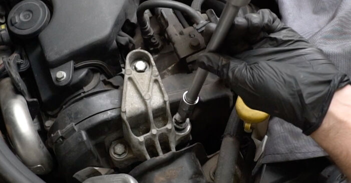 DIY replacement of Water Pump + Timing Belt Kit on RENAULT Clio III Hatchback (BR0/1, CR0/1) 1.4 16V 2009 is not an issue anymore with our step-by-step tutorial