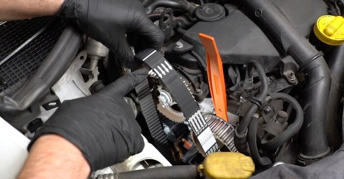 Hvordan man fjerner RENAULT CLIO 1.2 16V Hi-Flex 2009 Vandpumpe + Tandremssæt - nem at følge online instruktioner