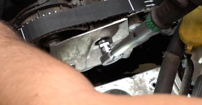 Trin-for-trin anbefalinger for gør-det-selv udskiftning på Renault Clio 3 2018 1.2 16V Hi-Flex Vandpumpe + Tandremssæt
