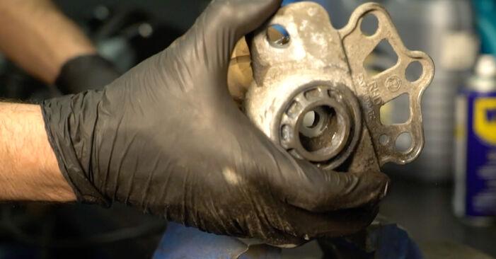 Fiat Punto 199 1.4 2010 Ammortizzatori sostituzione: manuali dell'autofficina