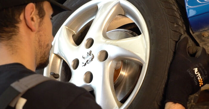 Jaké náročné to je, pokud to budete chtít udělat sami: Tlumic perovani výměna na autě Peugeot 206 cc 2d 1.6 HDi 110 2006 - stáhněte si ilustrovaný návod