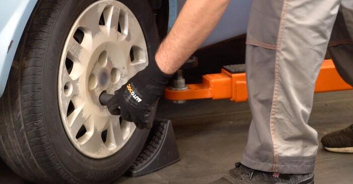 FIAT PUNTO 1.2 Bifuel Stoßdämpfer ausbauen: Anweisungen und Video-Tutorials online
