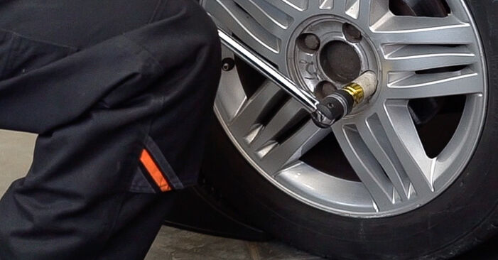 How to remove RENAULT SCÉNIC 2.0 2007 Shock Absorber - online easy-to-follow instructions