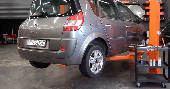 How to replace Shock Absorber on RENAULT SCÉNIC II (JM0/1_) 2008: download PDF manuals and video instructions