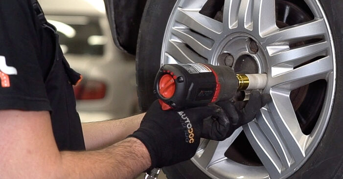 How hard is it to do yourself: Shock Absorber replacement on Renault Scenic 2 1.9 dCi 2009 - download illustrated guide