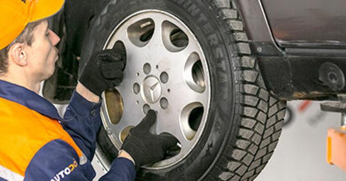 Zweckdienliche Tipps zum Austausch von Federn beim MERCEDES-BENZ C-Klasse Limousine (W202) C 220 D 2.2 (202.121) 1999