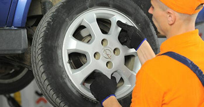 Schritt-für-Schritt-Anleitung zum selbstständigen Wechsel von Opel Astra g f48 1999 1.7 DTI 16V (F08, F48) Bremsbeläge