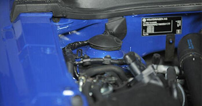 Come sostituire VW Lupo (6X1, 6E1) 1.2 TDI 3L 1999 Supporto Ammortizzatore - manuali passo passo e video guide
