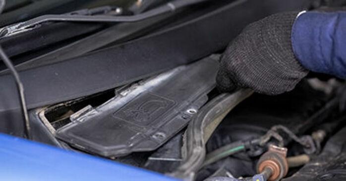 Zelf Interieurfilter CITROËN C3 I Hatchback (FC_, FN_) 1.6 16V 2005 vervangen