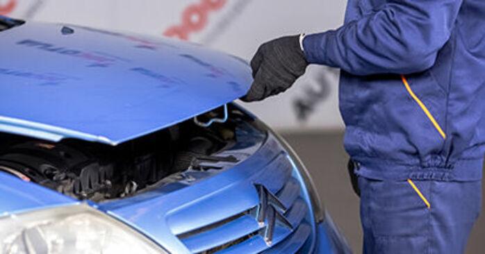 C3 I Hatchback (FC_, FN_) 1.4 16V HDi 2013 Interieurfilter handleiding voor het doe-het-zelf vervangen