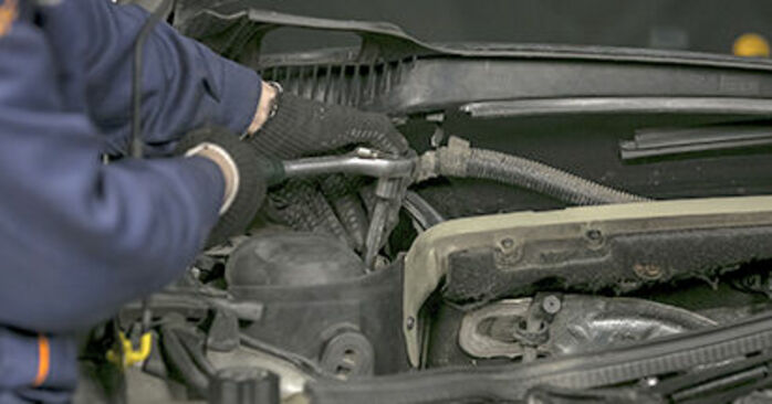 Changing Springs on PEUGEOT 407 (6D_) 1.8 2007 by yourself