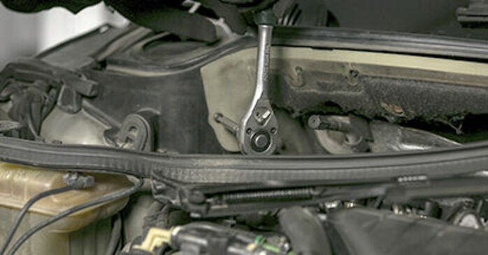 How to remove PEUGEOT 407 2.0 HDi 2008 Springs - online easy-to-follow instructions
