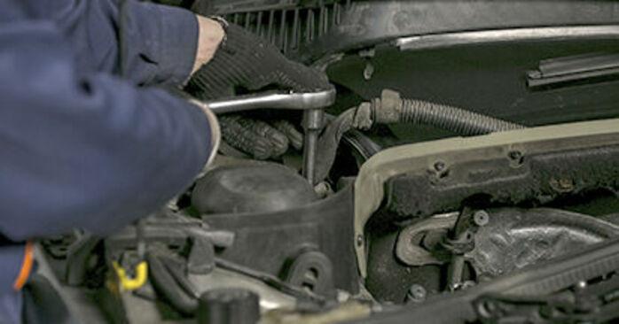 407 (6D_) 2.0 HDi 2007 Springs DIY replacement workshop manual