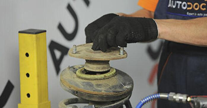 Schritt-für-Schritt-Anleitung zum selbstständigen Wechsel von Hyundai Santa Fe cm 2010 2.2 CRDi GLS Domlager