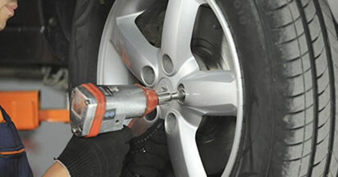 Steg-för-steg-rekommendationer för att byta Hyundai Santa Fe cm 2010 2.2 CRDi GLS Fjäderbenslagring på egen hand