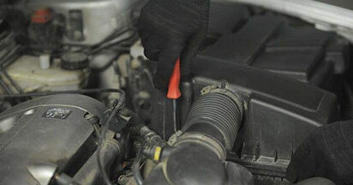 Luftfilter Peugeot 406 Kombi 1.8 16V 1998 wechseln: Kostenlose Reparaturhandbücher