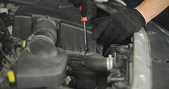 406 Break (8E/F) 2.2 1998 2.0 16V Luftfilter - Handbuch zum Wechsel und der Reparatur eigenständig