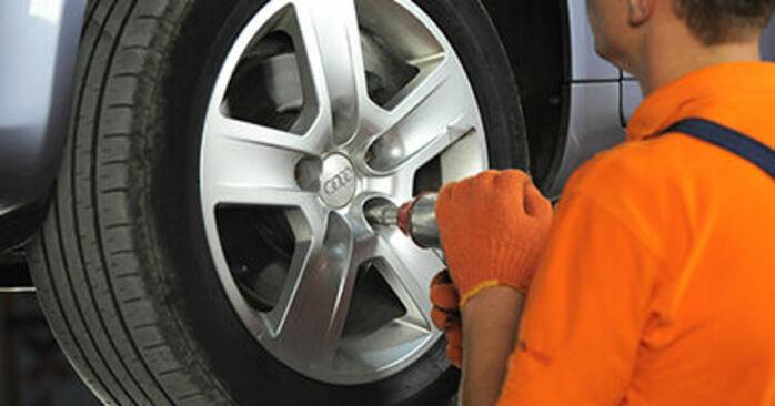 Schritt-für-Schritt-Anleitung zum selbstständigen Wechsel von Audi A4 b7 2007 2.0 TFSI quattro Bremsscheiben