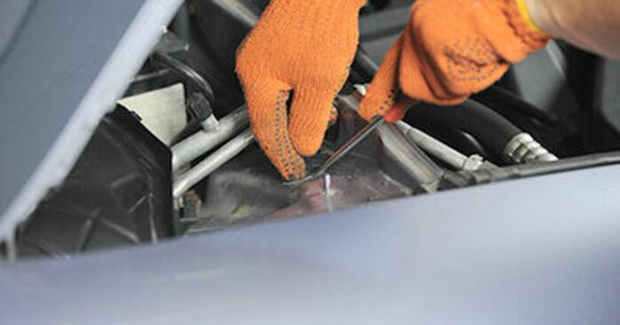 À quel point est-il difficile de le faire soi-même : télécharger le guide illustré pour le changement de Coupelle d'Amortisseur sur Audi A4 b7 1.8 T 2005