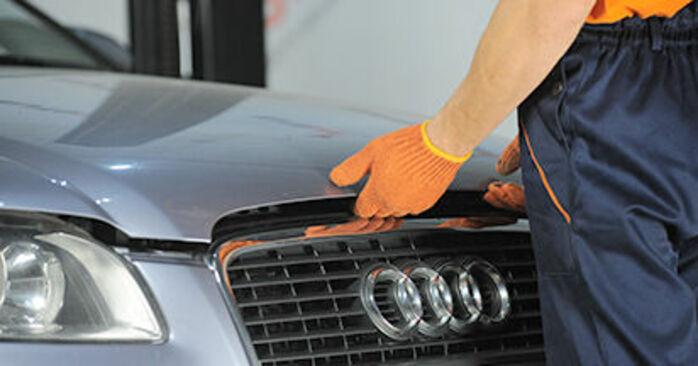 Combien de temps dure le remplacement : Coupelle d'Amortisseur sur Audi A4 b7 2007 - manuel PDF informatif
