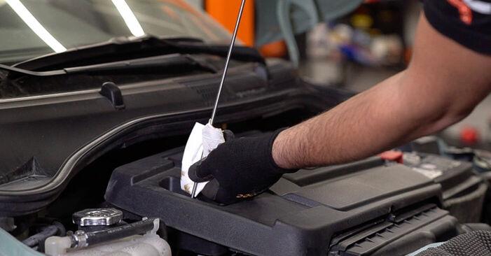 Schritt-für-Schritt-Anleitung zum selbstständigen Wechsel von Fiat 500 312 2020 1.2 LPG Ölfilter