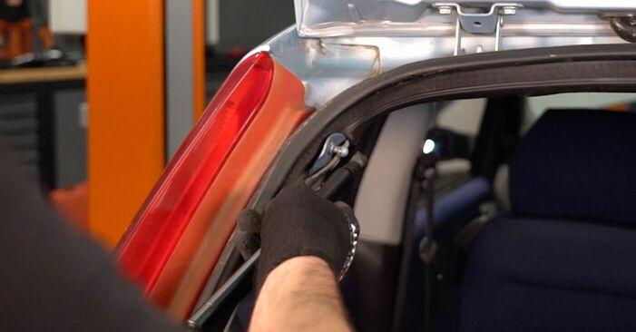 Come sostituire Pistoni Portellone su FIAT PUNTO (188) 2004: scarica manuali PDF e istruzioni video