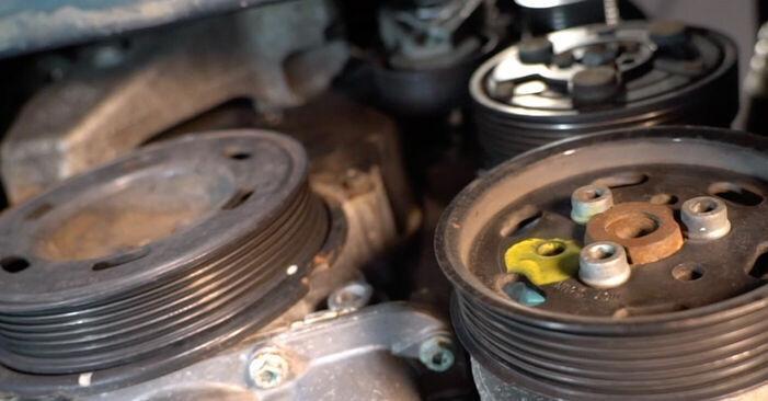 Reemplazo de Correa Poly V en un VW GOLF 1.6 16V: guías online y video tutoriales